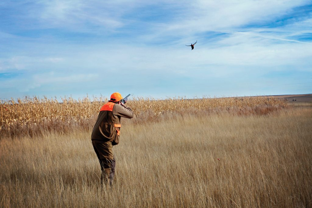 man shooting flying pheasant