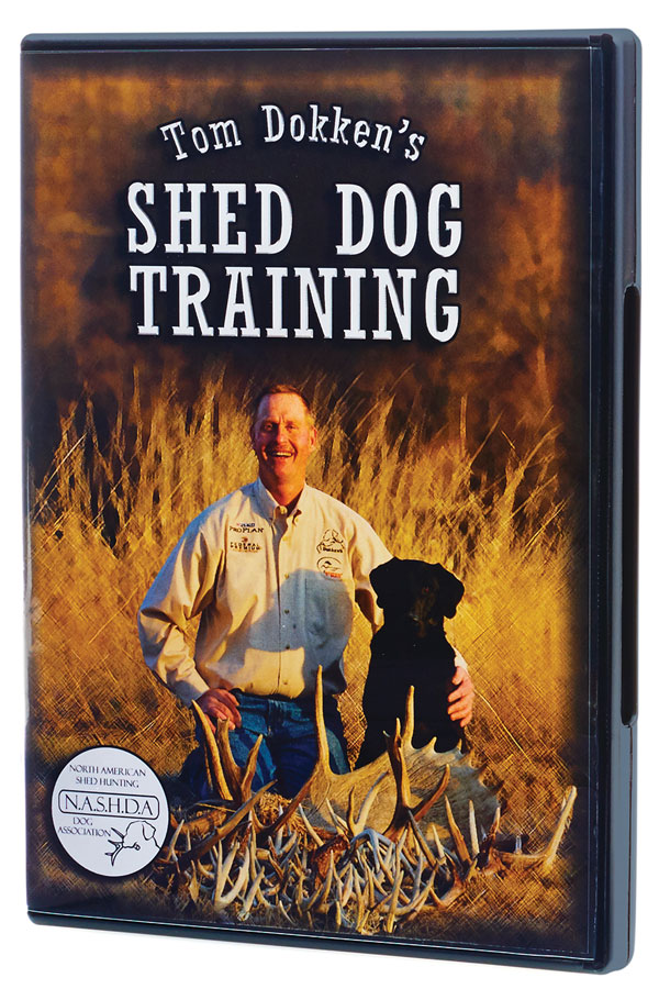 Shed Dog Training DVD