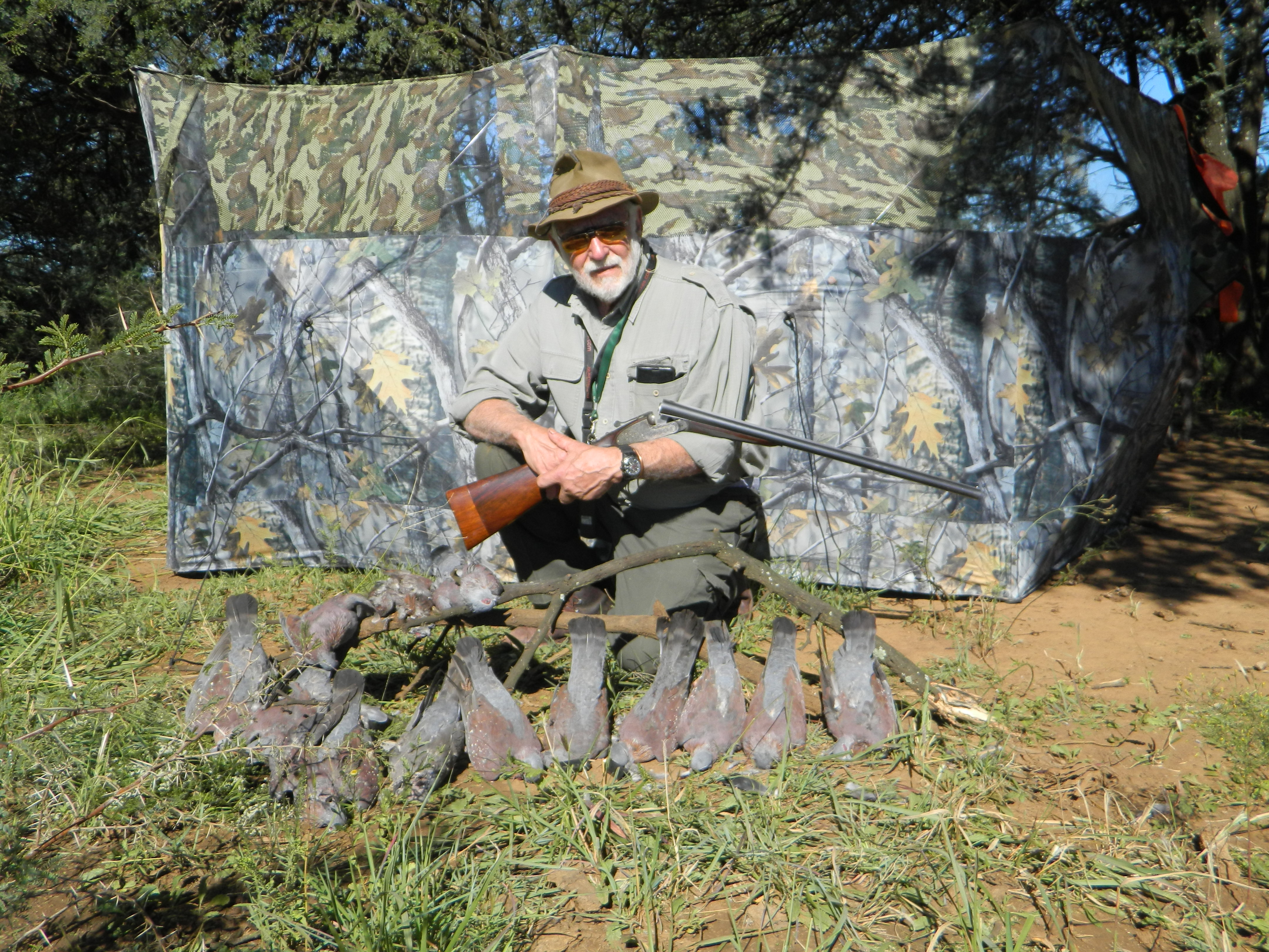 South Africa Rock Pigeons - Shooting Sportsman