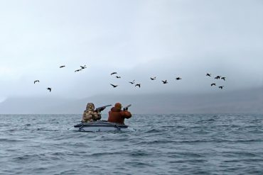 Cold Bay Fowling