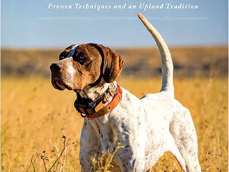 Training Bird Dogs with Ronnie Smith Kennels