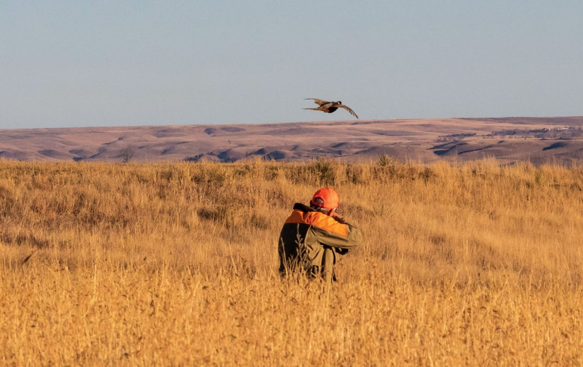 In order to prepare properly during the off-season, hunters should practice as much as possible on targets that simulate the birds they expect to encounter.