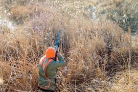 The Mythical 'Even' Pattern | Shooting Sportsman Magazine