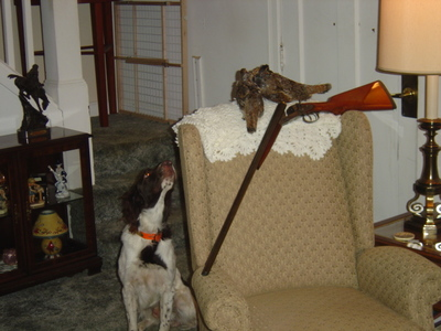 Sampson & Double Grouse with Hammer Gun